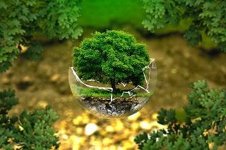 Környezetbarát mosószerek és tisztítószerek.